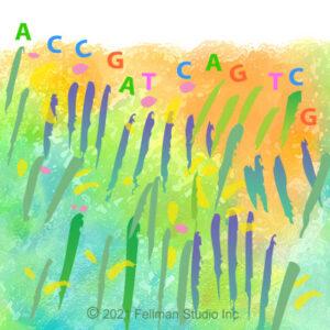 DNA vs Genome; what's the Diff?